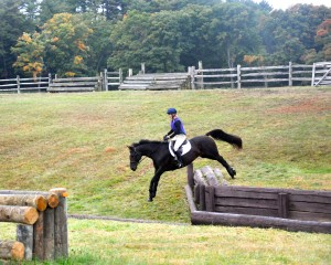 Raven schools a drop bank during a cross-country clinic