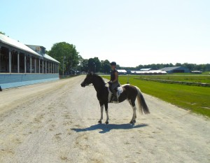 Luna hanging out at the finish line on the racetrack